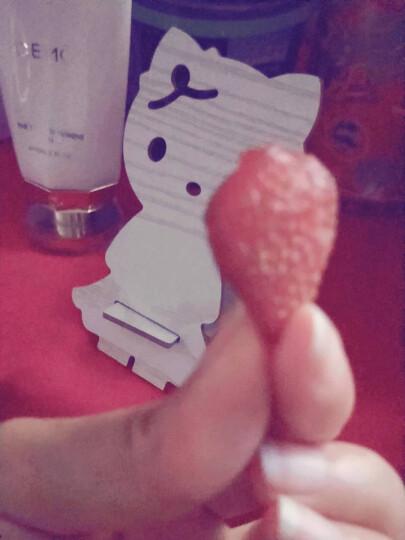 三只松鼠蔓越莓干 蜜饯果干休闲零食酸甜开胃红宝石果肉果脯100g/袋 晒单图