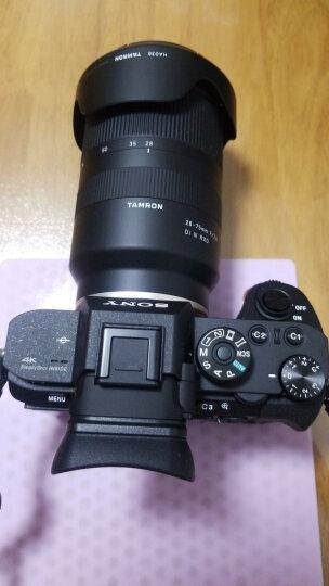 索尼(SONY)Alpha 7R II 全画幅微单相机 SEL2470Z镜头套装(约4240万有效像素 5轴防抖 A7RM2/a7r2) 晒单图