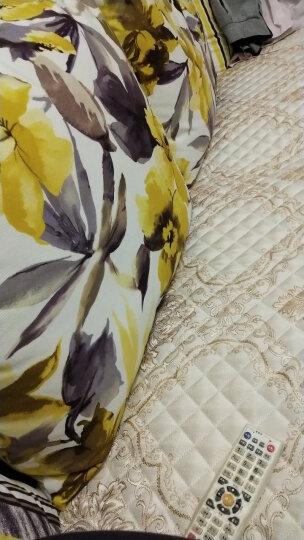 双虎家私 布艺沙发客厅家具小户型沙发可拆洗布艺沙发组合069 069摩登香橙-右妃 晒单图