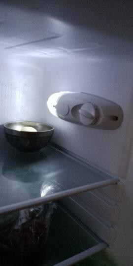 创维 (SKYWORTH) 160升 冰箱小型双门两门 家用宿舍租房老人 匀冷微霜 除菌率99.99% 省电静音 BCD-160 晒单图