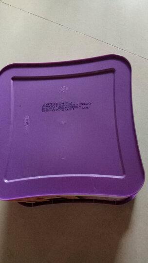 马来西亚进口 茱蒂丝(Julie's) 乳酪三明治饼干 礼盒 504g 办公室下午茶休闲零食送礼夹心零食 晒单图