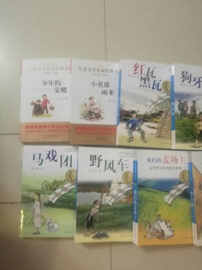 曹文轩纯美小说:红瓦黑瓦 晒单图