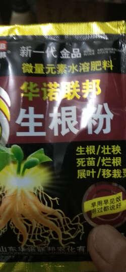 免邮{买二送二}植物花卉盆栽快速生根粉剂绿植花肥土肥植物生长剂盆栽肥料移栽种植花肥料 磷酸二氢钾 晒单图
