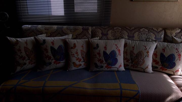 Avigers 棉麻绣花沙发抱枕靠垫床头汽车靠枕办公午睡枕汽车护腰靠背垫 黄蝴蝶 45cm*45cm外套+内芯 晒单图