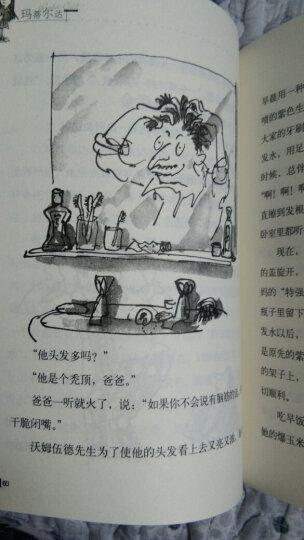 罗尔德·达尔作品典藏:女巫 晒单图
