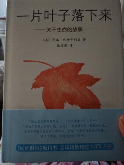 一片叶子落下来:关于生命的故事(2014版) (爱心树童书) 晒单图