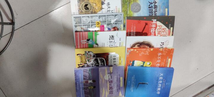 长青藤国际大奖小说第一辑+第二辑:十岁那年、从天而降的幸运、宇宙最后一本书等中小学生课外阅读必读书目(套装共10册) 晒单图