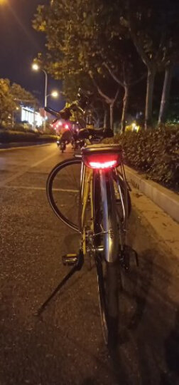 MOMENTUM莫曼顿iSee croX 1爱喜跨世1都会通勤碟刹公路自行车 女款-芥末黄 晒单图