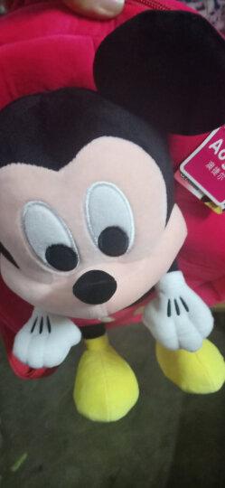 """迪士尼Disney 清新系列毛绒玩具 生礼物公仔抱枕 玩偶布娃娃靠垫 9"""" 米奇 DSN(T)1165 约30厘米 晒单图"""