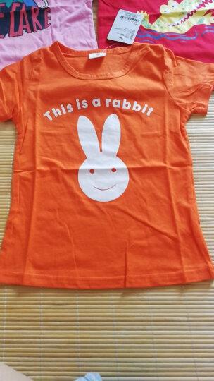 贝壳家族 夏装女童T恤简约图案短袖上衣tx3275 浅粉娃娃 90码 晒单图