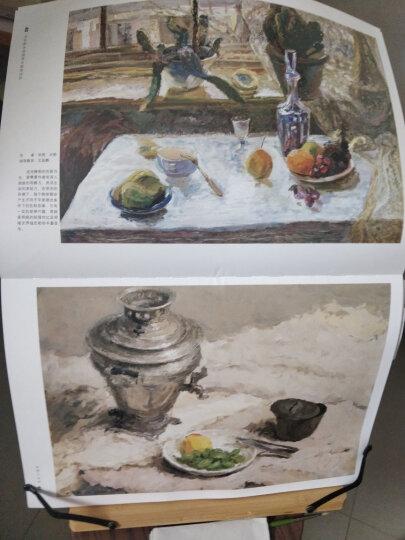 中央美术学院附中留校作品:色彩大范本NO.1 晒单图