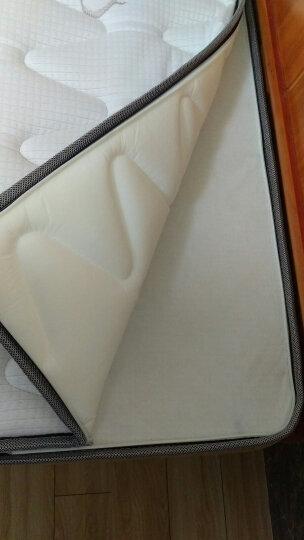 水星 家具床垫乳胶床垫椰棕床垫棕垫弹簧床垫软硬适中舒塔升级版 A款舒适款-美国弹簧+环保椰棕 1500*2000 晒单图
