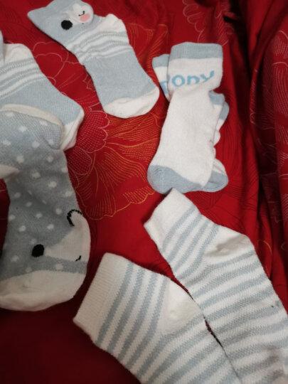 象宝宝(elepbaby)婴儿袜子6双盒装春秋夏季薄款透气吸汗儿童网眼袜子新生儿宝宝袜子4-6岁女孩组 晒单图