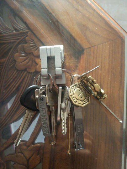 丛林豹钥匙扣男士穿皮带腰挂双环商务送礼定制刻字汽车用品 304不锈钢钥匙链 钥匙环 汽车钥匙扣 丛林豹不锈钢镜面N02 晒单图