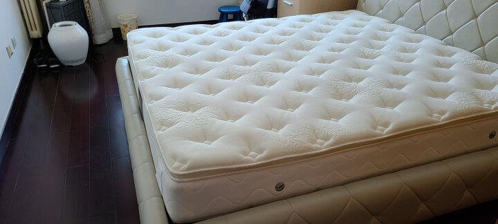 金可儿 迪拜奢华酒店款 席梦思乳胶床垫 独立弹簧床垫 软硬适中 迪拉-经典版 1.8米*2米*0.24米 晒单图