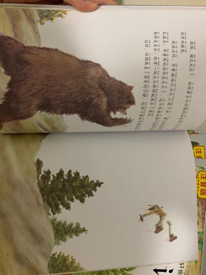 法布尔昆虫记(注音美绘本全10册,真人朗读+赠送昆虫知识手册+昆虫贴纸) 晒单图