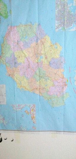 2020全新正版 海南省地图 大幅面展开约1.1米 可贴墙地图 清晰行政交通物流水系地形 晒单图