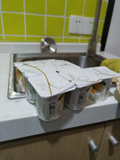 伊利 畅轻 风味发酵乳 黄桃果粒酸奶酸牛奶 100g*8杯 晒单图