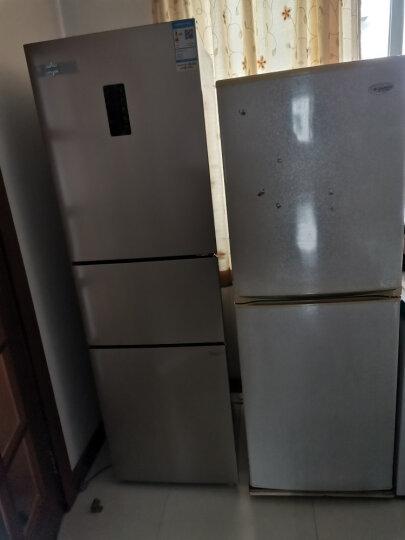 格力(GREE)晶弘230升迷你小型家用三门大冷冻电冰箱 风冷无霜 节能 离子抗菌净味 BCD-230WETCL 晒单图