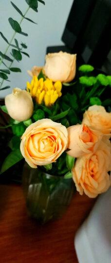 维纳斯鲜花速递同城玫瑰花19朵红玫瑰礼盒香槟百合礼物花束康乃馨鲜花生日礼物全国花店配送北京上海广东 爱在心头-99朵混搭玫瑰花束 晒单图