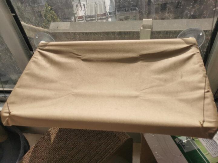 憨憨乐园 狗狗毛毯宠物窝垫睡垫狗毯子猫咪珊瑚绒双面绒毛毯泰迪床垫春秋保暖狗被子颜色随机 40*60cm 晒单图