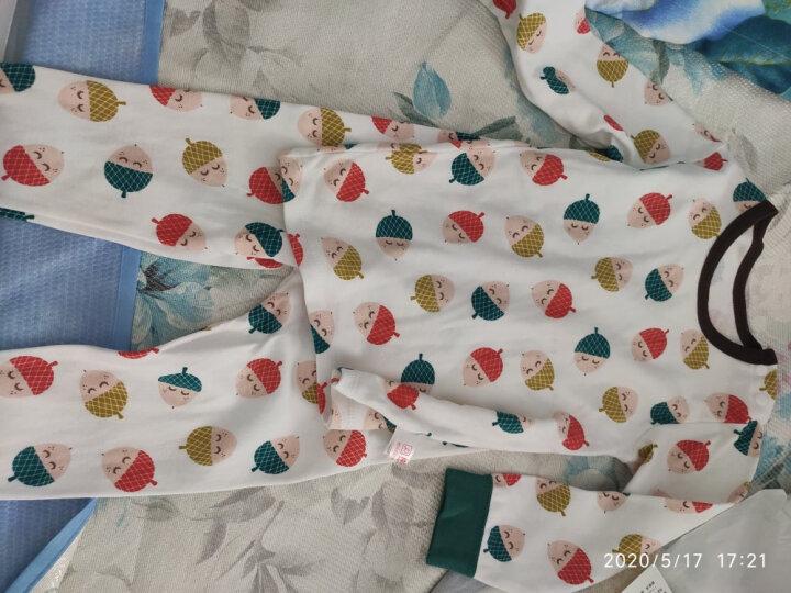 【23款可选】南极人婴儿高腰内衣套装宝宝纯棉衣服新生儿内衣秋衣秋裤套装 平腰-闪电小熊蓝色 73CM 晒单图