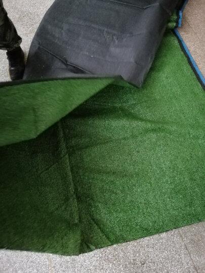 迪茵地毯 塑料假草皮人造仿真草坪 幼儿园人工工程假草坪室内橱窗飘窗阳台地毯房顶遮阳 军绿色10mm 晒单图