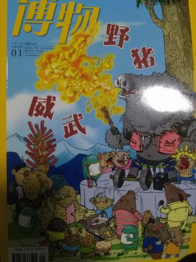 博物杂志 2019年1月起订阅 1年共12期 青少年科普百科中国国家地理青春版杂志铺 每月快递 晒单图