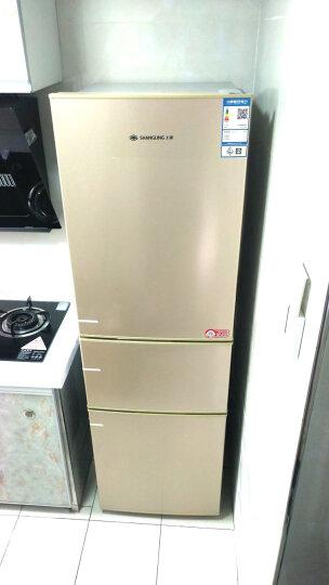 上菱节能静音省电冷藏冷冻保鲜家用电冰箱大容量 191THCK 三开门 晒单图