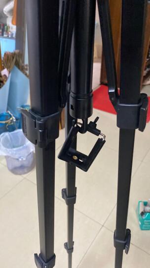 云腾(YUNTENG) VT-888 精品便携三脚架云台套装 微单数码单反相机摄像机旅行用 优质铝合金超轻三角架黑色 晒单图