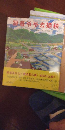 五味太郎:从窗外送来的礼物(洞洞绘本) (爱心树童书) 晒单图