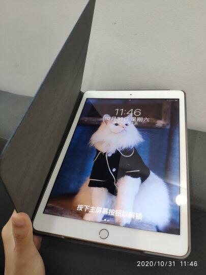 图拉斯(TORRAS) 图拉斯 苹果iPad mini2保护套iPad mini4/3/1 【iPad mini4代】 森系列 森海蓝 晒单图