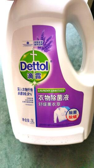 滴露Dettol 超浓缩衣物除菌液 清新柠檬 700ml 杀菌除螨消毒液 孕妇儿童内衣一起洗 晒单图