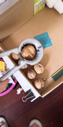 拜杰(Baijie)漏斗型核桃夹 坚果钳子山核桃夹 剥壳器工具 加厚款银色 晒单图