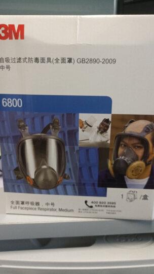 3M 防毒口罩面具全面型防护面罩(中号)6800  防有机蒸汽面罩喷漆防甲醛yzl 【6800防多种气体七件套】6800+6006 晒单图