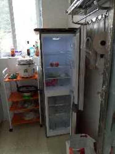 澳柯玛(AUCMA)176升两门冰箱  双开门小冰箱  宿舍租房家庭多用 节能静音 7档保鲜 BCD-176NE 晒单图