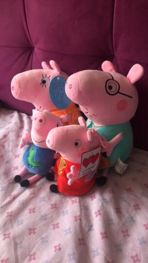 小猪佩奇毛绒玩具公仔 啥是佩奇 佩琪布娃娃儿童沙发抱枕宝宝安抚玩偶礼品儿童节生日礼物送女友男友 小号一家四口礼盒套装 晒单图