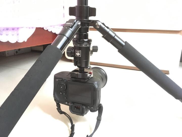 思锐(SIRUI)三脚架 R2204+G20KX 碳纤维含云台尼康佳能单反相机三角架 单反相机三脚架 专业稳定 微单通用 晒单图