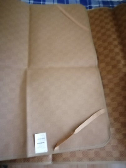 【正常发货】北极绒 凉席可折叠学生床单人床藤席子冰丝席竹席草席二件套 仙人掌抹茶绿-/送枕套 0.9*1.9m学生宿舍床使用 晒单图