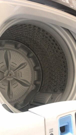 小天鹅(LittleSwan)水魔方系列 8公斤变频 波轮洗衣机全自动  防缠绕 小京鱼智能控制 TB80V80WDCLG 晒单图