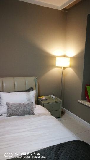 凡丁堡落地灯客厅简约现代铁艺卧室床头台灯立式书房MWDS315FL 配40W暖光白炽灯泡 拉线开关 晒单图