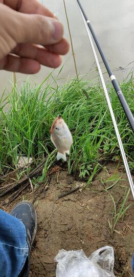 比尔·傲威(BILLALWAYS)EVA加厚折叠钓鱼桶 鱼护桶大号钓鱼箱渔具 45cm黑色 晒单图