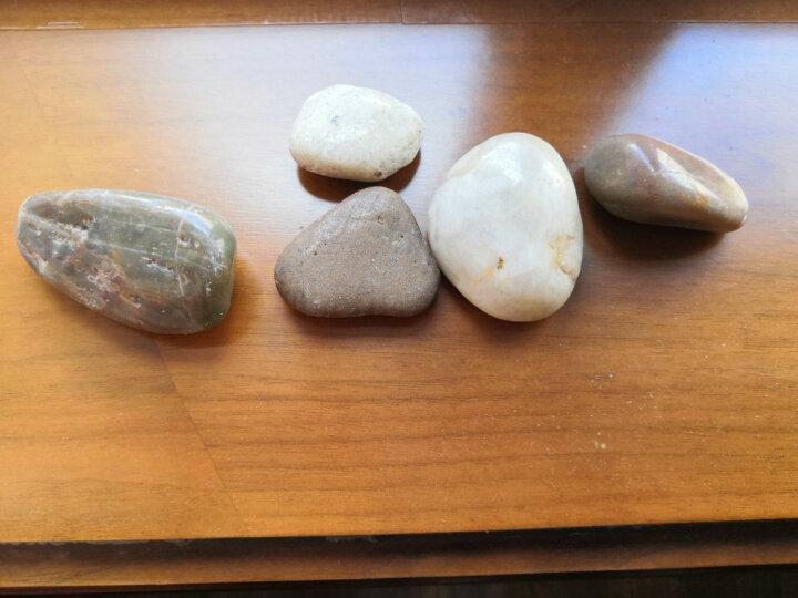 鱼缸造景龟缸造景底砂砂石装饰五彩石雨花石鱼缸用品 玉彩石 小粒300g 晒单图