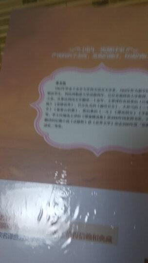 福尔摩斯探案集(套装共5册)(名家名译世界文学名) 晒单图