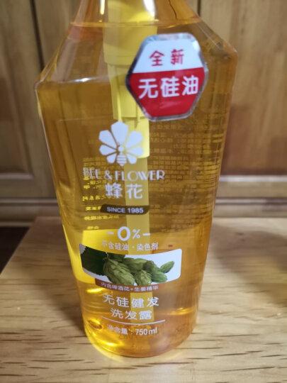 蜂花 无硅油生姜啤酒花健发洗发水护发素洗护套装去油女男士洗头膏洗护550mlx2+100mlx2 晒单图
