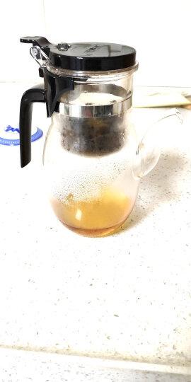 金灶(KAMJOVE) 大容量飘逸杯泡茶壶 耐热玻璃茶具泡茶杯茶壶 过滤花茶壶泡茶器茶水分离杯 K-207/900毫升 晒单图