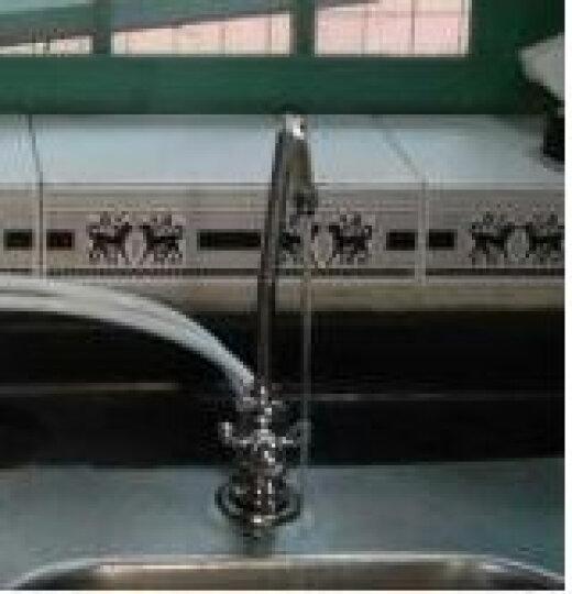 卫宁MZ-5净水器家用直饮机净水机厨房自来水过滤水净化设备 椰壳颗粒碳滤芯 晒单图