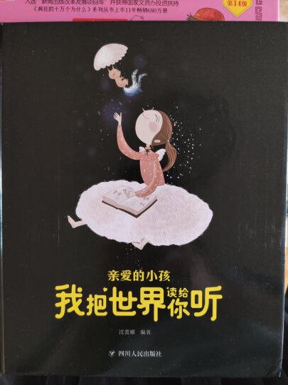 幼儿恐龙大图鉴(套装共8册) 晒单图