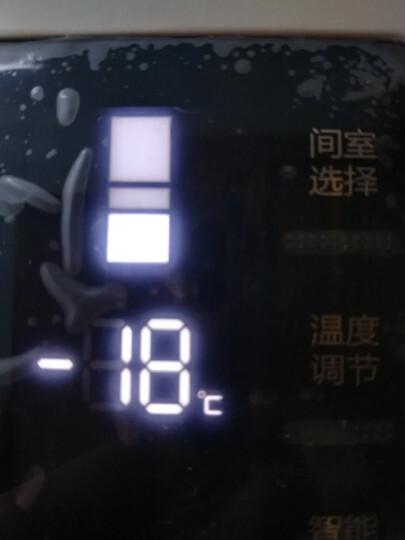 格力(KINGHOME)晶弘 230升风冷无霜三门冰箱 宽幅变温 离子净味 格力晶弘BCD-230WETCL 晒单图