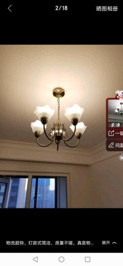 飞利浦(PHILIPS)吊灯 客厅餐厅卧室欧式美式铁艺北欧简欧创意艺术复古吊灯灯具套餐 简美 8头吊灯 花纹布艺灯罩(送4.8W暖黄光光源) 晒单图
